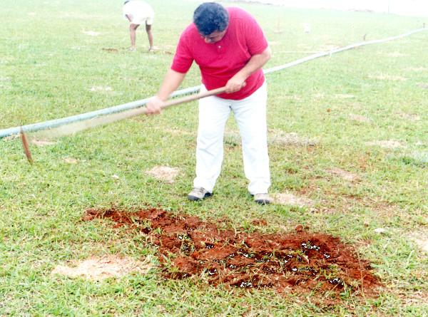 2002: Para jogar em casa e sem dinheiro, até o presidente plantou grama
